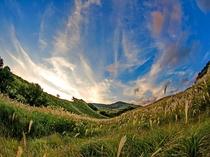 例・細野高原