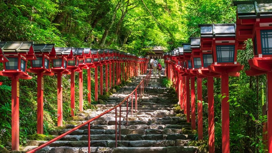 【貴船神社】清々しい緑に囲まれた古社。「縁結び」のパワースポットとしても人気のスポット