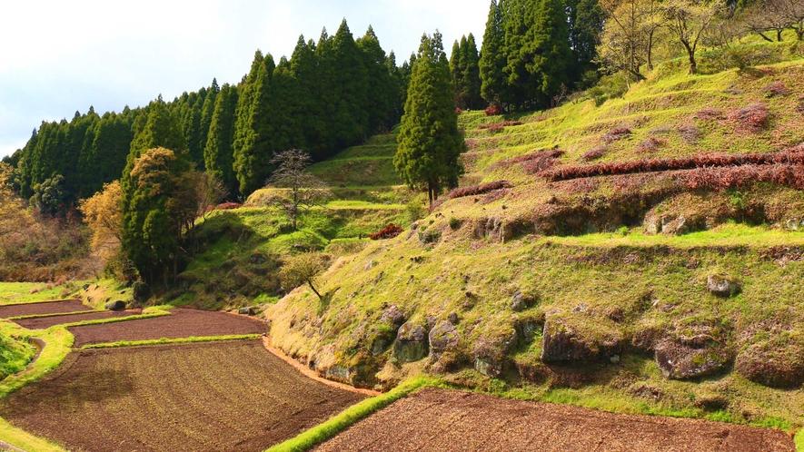【周辺】里山のフットパスコースも満喫できます♪つばき庵から歩いて5~10分です。