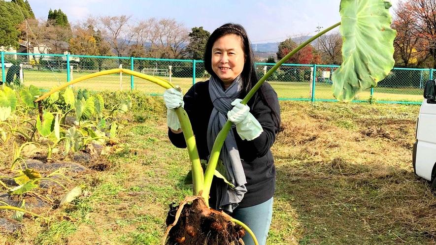 【畑お手伝い体験】大きな収穫に大満足!
