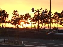大阪湾へ沈む夕陽①