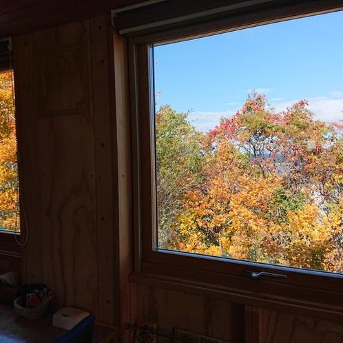 紅葉が散りはじめて、木立のすき間から海が見えてきました