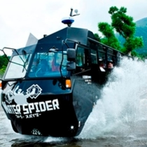 NINJA BUS / WATER SPIDER