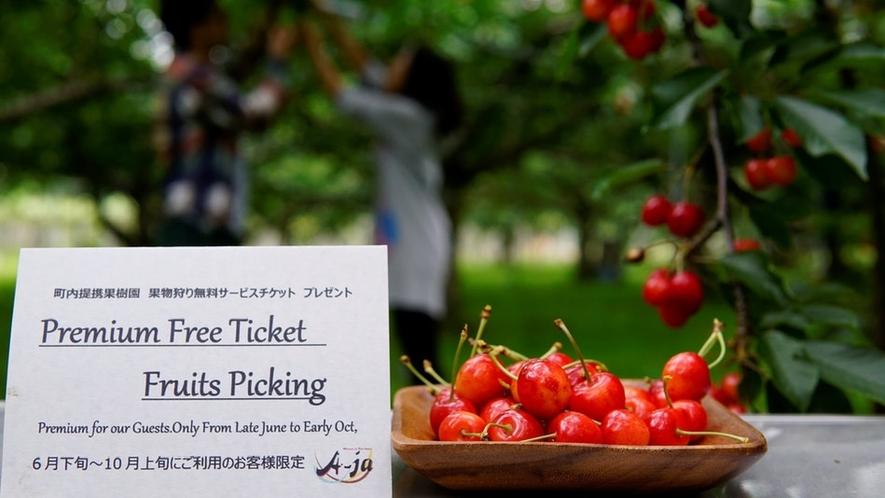 初夏~秋までのお客様に果物狩り無料プレゼント