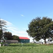 近くの牧場。のんびり出来ます。