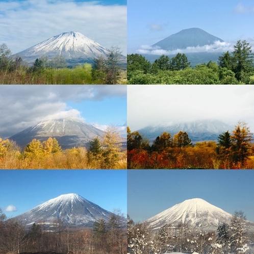 Windows view throughout the seasons!