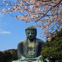 Kotokuin Temple (Great Buddha)