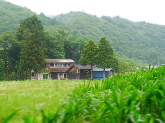 周辺の畑から見る「乙戸畑」