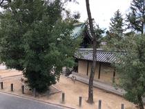 部屋から見える北野天満宮東門