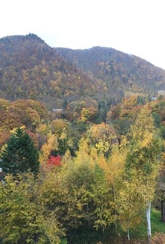 四季折々 ~秋~