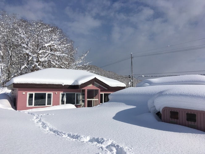 前庭(冬)