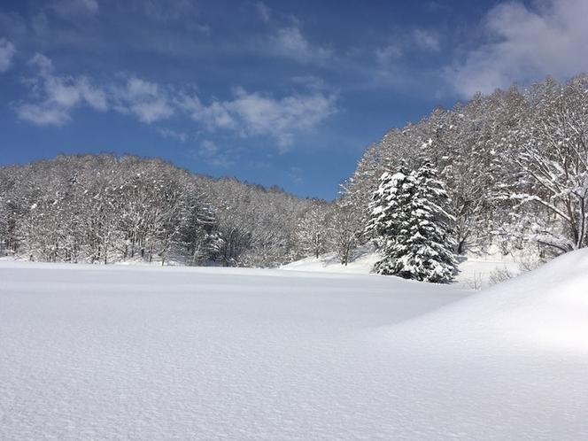 建物の西側(冬)パウダースノーの深雪です