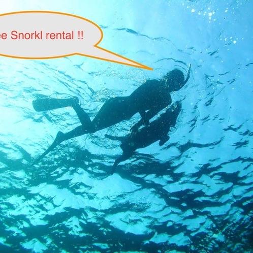 シュノーケルのレンタル無料/Free Snorkel rental