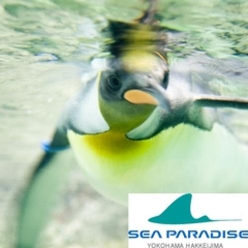 ★横浜八景島シーパラダイス★・・・4種類の水族館に、テーマパークも♪