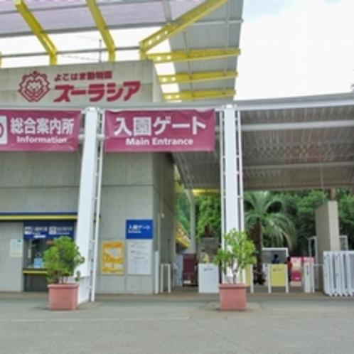 ★ズーラシア★・・・日本最大級の動物園です!ご家族、カップルに大人気♪