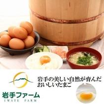 岩手県から取り寄せた新鮮な卵を贅沢に使用した卵かけごはんが絶品