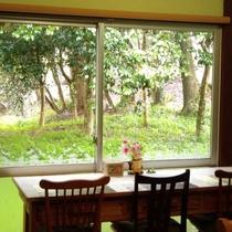 木漏れ日を感じながらティータイム!読書やお仕事にもおすすめのカフェです。