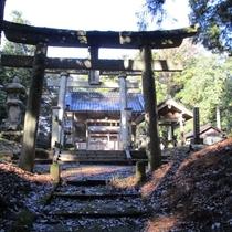 周辺は文化財や史跡も多く、お散歩には最適な場所。無人の趣きある神社の森は、トトロに会えそうな雰囲気あ