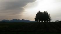 360℃を見渡せる伯耆国庁跡。牧歌的な草原から伯耆富士「大山」を見ることができます。