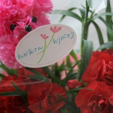 美肌の湯で母娘(ハハコ)の絆を深める旅〜いつもありがとう〜の気持ちを形に!プレゼント旅行に最適!