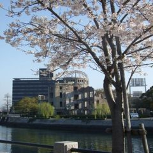 ★広島タウン★ 原爆ドームと桜