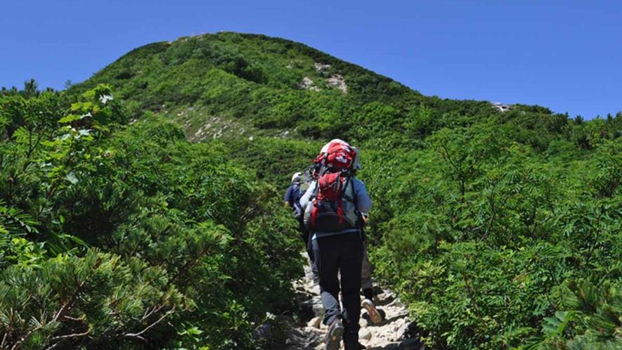 *【周辺観光_唐松岳】ゴンドラとリフトを乗り継いで八方池山荘まで一気に上ることができます。