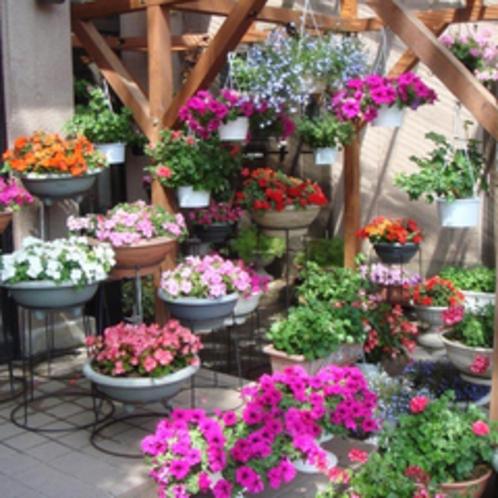 *【施設】季節の美しい花々が皆様の到着をお出迎え。