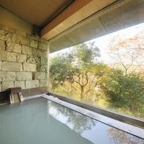 仙石原温泉