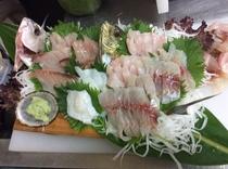 食事例 釣りたて地魚・刺身の盛り合わせ
