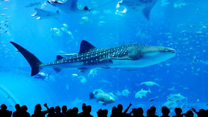 【3連泊以上限定】沖縄の海を丸ごと体験☆沖縄美ら海水族館チケット付き<素泊まり>