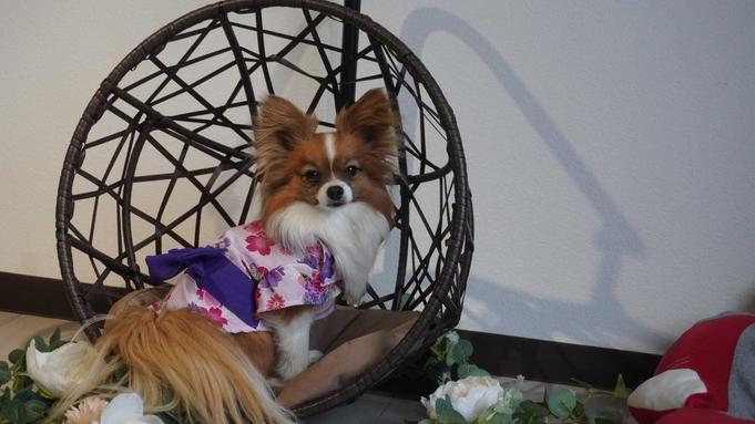 【静岡&近隣犬民限定】愛犬用マグロ陶板焼き&愛犬無料!近隣でゆったり旅行<★基本コース>