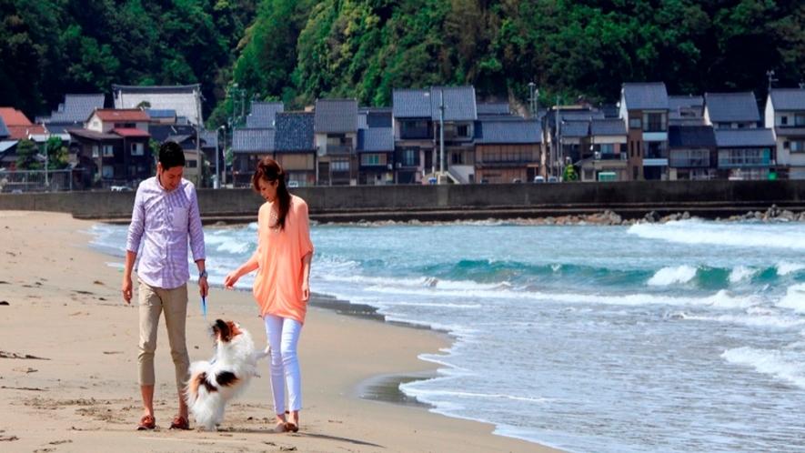 わんちゃんと海辺をお散歩!