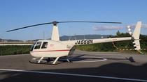 ヘリコプタープラン