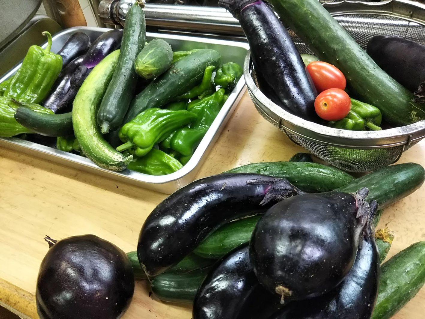 自家栽培のオーガニック野菜