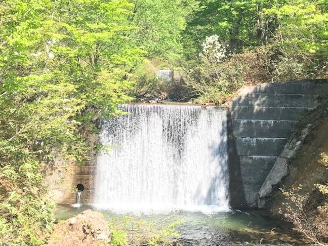 道路脇の滝