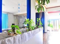 【1階廊下】観葉植物をたくさん育てています。