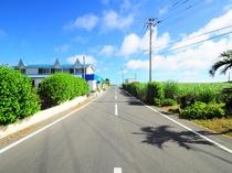 【外観】当館の前の気持ちの良い一本道