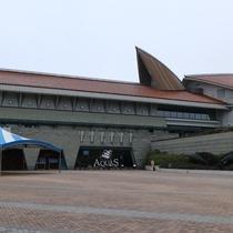 *【AQUASーしまね海洋館ー】西日本で唯一シロイルカが見れます!当館から車で約40分。
