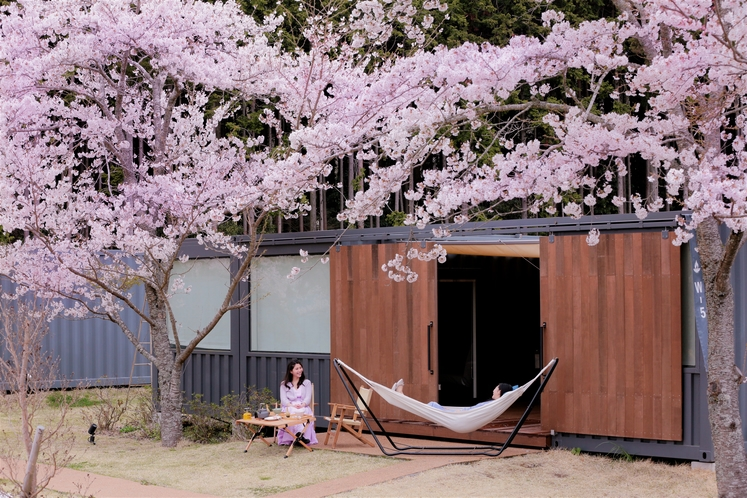 桜とキャビン