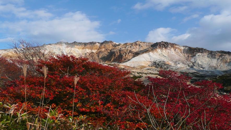 恵山(今も噴気を上げ周囲は硫黄のにおいがたちこめる火山)