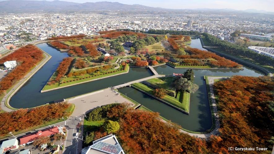 五稜郭タワーから見た五稜郭公園(秋)木々の紅葉を眺めながら周辺散策はいかが