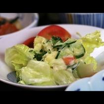 【夕食】自家製野菜のサラダ
