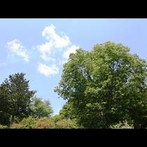 【春日温泉】うまい空気とゆったりとした時間の流れ
