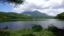 夏の女神湖と蓼科山