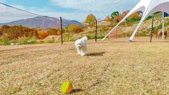 【秋冬旅セール】愛犬と楽しめる贅沢グランピング★フレンチコースBBQ (1泊2食) ペット可