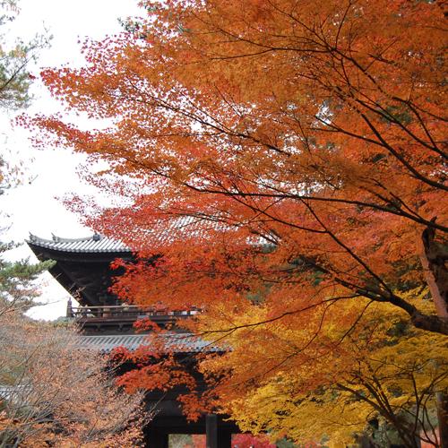 ◆京都観光◆南禅寺の紅葉