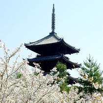 ◆京都観光◆仁和寺