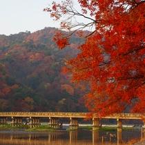 ◆京都観光◆嵐山ー秋ー