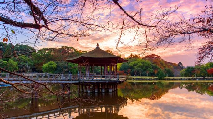 【秋冬旅セール】【迷ったらこちら】古都奈良の美味を堪能「特別大和懐石」朝夕付き
