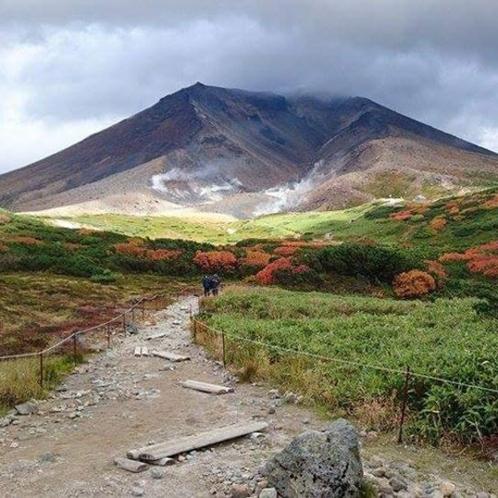 秋ハイキングコース